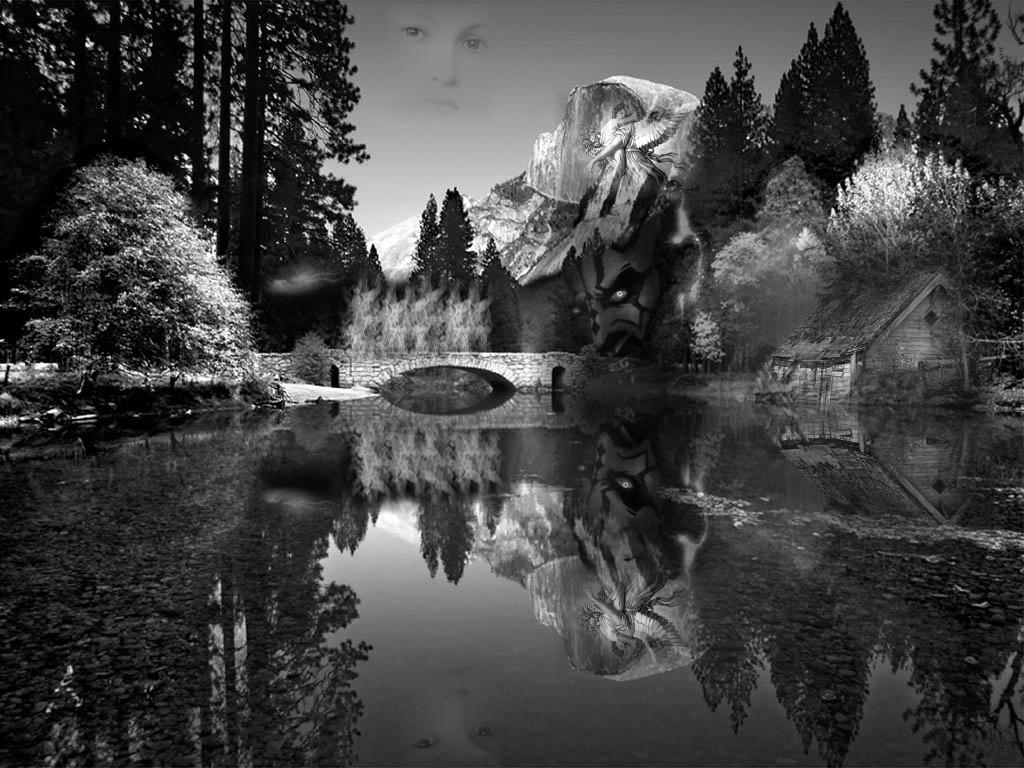 reflectionjpg.jpg